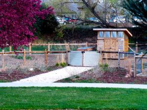 Rolland Moore Community Garden - Fort Collins